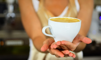 barista propose americano or espresso coffee cup. perfect morning with best coffee. relax in cafe or coffee shop and drink. fresh morning coffee with milk and cream froth. Peaceful morning