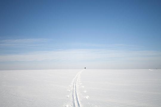 snowy field in winter. Winter landscape with  snowy fields
