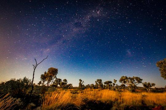 Starry night sky over outback landscape