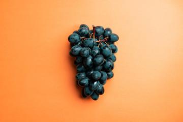 Dark blue grapes Fototapete
