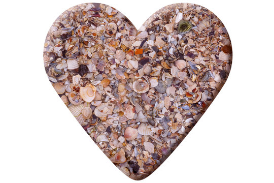 heart made of seashells isolated on white