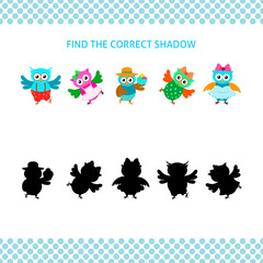 Find the correct shadow kids educational game. Cartoon owls with silhouettes set