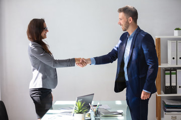 Businesswoman Shaking Hands With Her Partner
