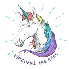 Hand drawing hipster fantasy animal unicorn illustration