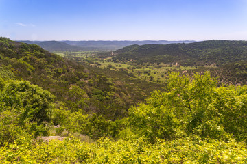 Texas Hill Country 12