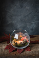 Hello Autumn dark still life postcard. Decor vase with a burning candle, acorns, moss and maple leaves. selective focus