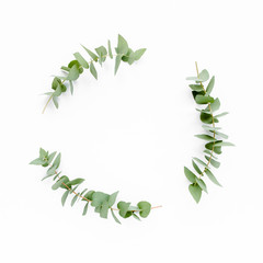 Eucalyptus leaves on white background. Wreath made of eucalyptus branches. Flat lay, top view