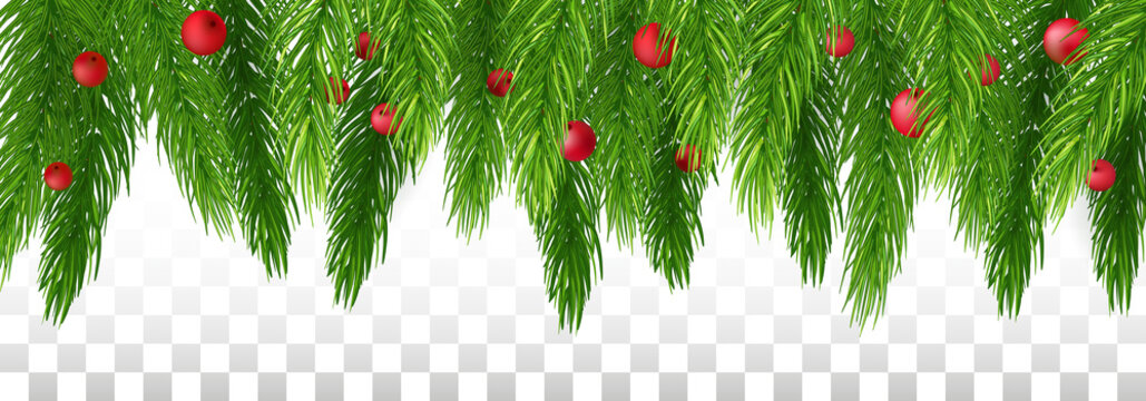 Christmas long garland. evergreen garland of Xmas tree, berries . Merry Christmas and Happy New Year greeting. Panorama. Vector illustration. Eps 10.
