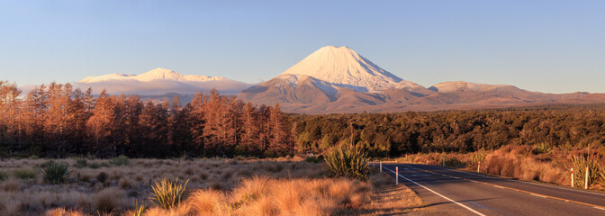 Road at Tongariro National Park and volcano Ngauruhoe, New Zealand