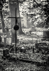 stary cmentarz we mgle