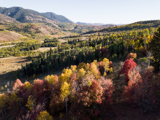 Autumnal foliage in the mountains aerial landscape