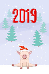 banner 2019  with cute piggy on the winter landscape