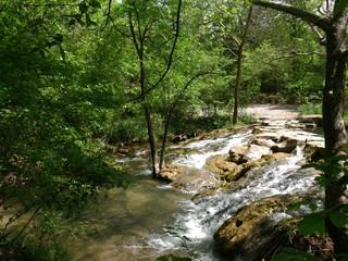 Photo sur Aluminium Rivière de la forêt Fresh cool water flowing in a stream in a lush jungle