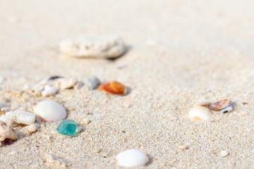 貝殻とシーグラス