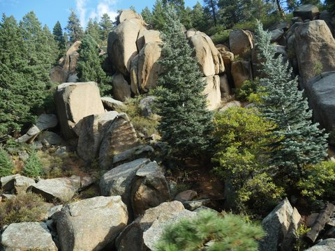 Big stones and boulders with pine trees on the way up to the summit of Pikes Peak in Manitou Springs, Colorado