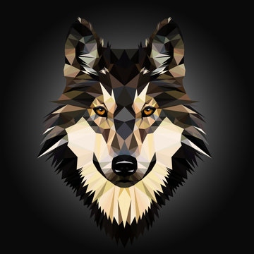 Low poly triangular dog wild wolf face on grey background, symmetrical vector illustration isolated.  Polygonal style trendy modern logo design. Suitable for printing on a t-shirt.
