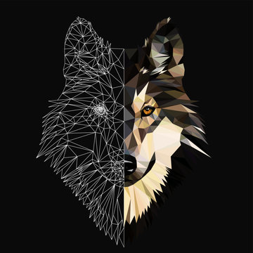 Wild wolf face on grey background, low poly triangular and wireframe vector illustration.  Polygonal style trendy modern logo design. Suitable for printing on a t-shirt.