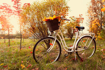 White retro style bicycle with basket with orange, yellow and green leaves, parked in the colorful fall park among trees, horizontal composition