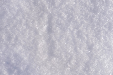 snow cover pattern