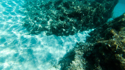 underwater exploration in a paradise island