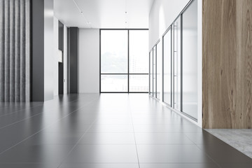White, gray and wooden office lobby interior
