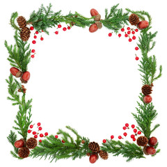 Abstract winter square border with cedar cypress, fir, holly berries, pine cones and acorns on white background.