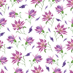 Seamless vector pattern with cornflowers on white a background