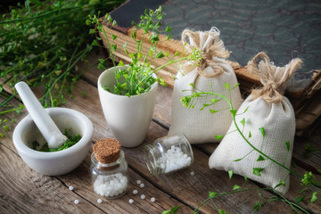 Bunch of shepherds purse, bottle of homeopathic globules, mortar of bursa pastoris medicinal herbs and old book. Homeopathy medicine.