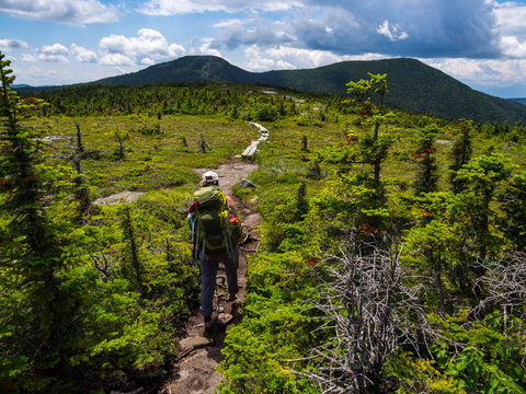 Hiker on Appalachian Trail in Maine, Lush Mountain Vista