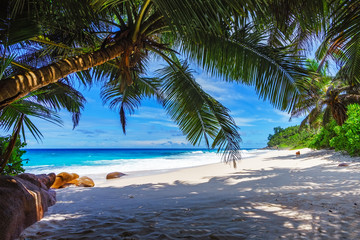 beautiful paradise beach, anse bazarca, seychelles 15
