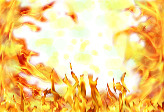 Close up fire flames isolated on white background