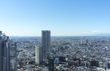 view of tokyo from shinjyuku highrise building