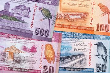 Sri Lankan money, a business background