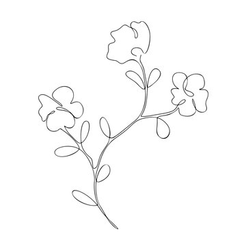 The floral branch with three flowers, decorative summer, spring plant, cherry tree, sakura, one, continuous line art, black outline, vector single, isolated object on the white background