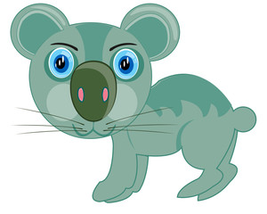 Cartoon of the wildlife koala on white background