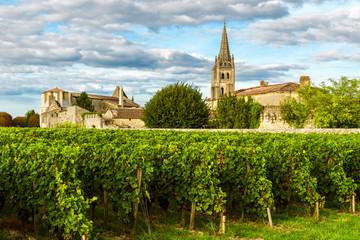 Sunny landscape of bordeaux wineyards in Saint Emilion in Aquitaine region, France