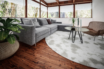 Modern sitting room containing plant and couch