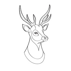 Young beautiful red deer crowned with horns. The illustration is made in the style line-art.