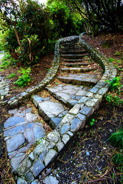The Winding Steps.