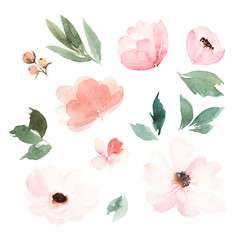 Watercolor floral set. Hand drawn watercolour illustration