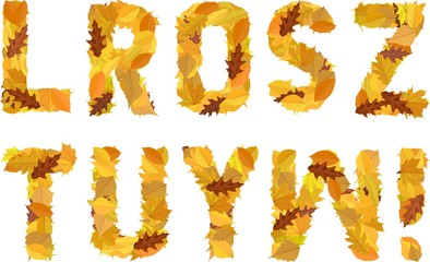 font from autumn leaves Wall mural
