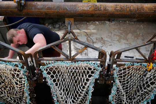 A French fisherman prepares drag nets on the French trawler Bel Espoir before it leaves the harbour of Port-en-Bessin on the eve of the start of the scallop fishing season