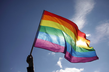 Rainbow flag is waved during a protest against proposed changes to the constitution in Bucharest