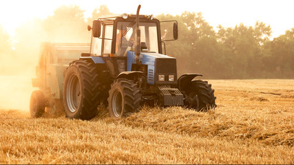 Tractor with trailer in summer on field. Harvesting wheat crop.