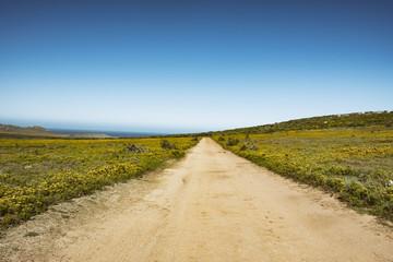 West Coast Reserve Roads