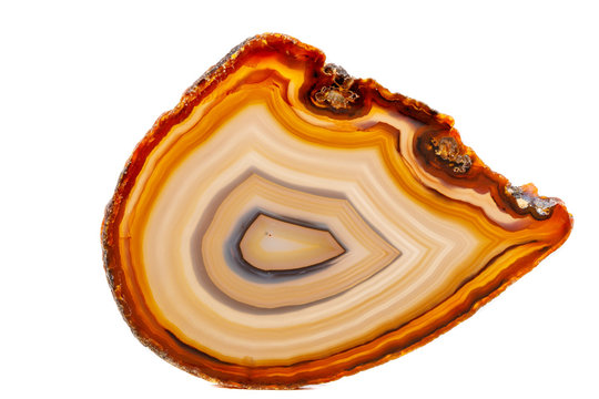 Macro mineral stone Yellow, brown Agate breed a white background