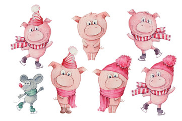 Watercolor hand drawn illustration of cute three pigs isolated on white background.