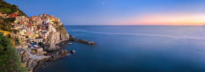 Foto auf Gartenposter Ligurien Manarola Panorama, Cinque Terre, La Spezia, Ligurien, Italien
