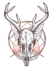 Sketch Of Deer Skull With Dreamcatcher And Feathers. Boho Hand Drawn Illustration
