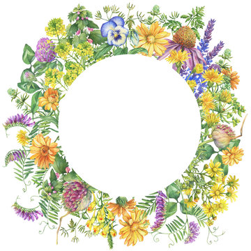 Banner, round frame with flowering wildflowers, medicinal herbs. Watercolor hand drawn painting illustration isolated on a white background.